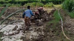 Tekan Biaya Produksi dengan Call Hand Traktor
